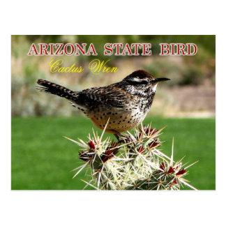 Arizona-Staats-Vogel - Kaktus-Zaunkönig Postkarte