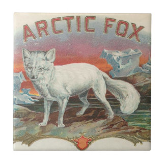 Arktischer Fox Keramikfliese