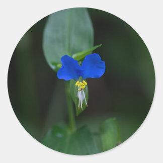 Asiatischer Dayflower-blaue Wildblume-Aufkleber Runder Aufkleber