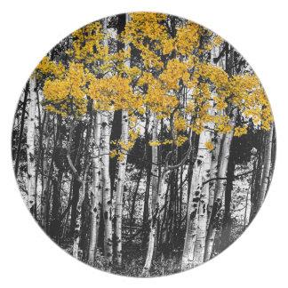 Aspen-Touch der Orange Melaminteller