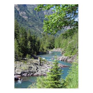 Atemberaubender staatlicher Wald Postkarte