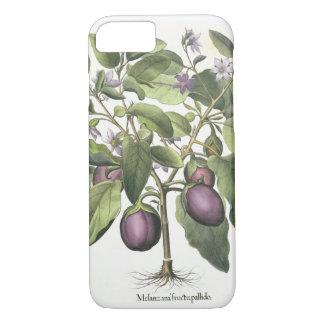 Aubergine: Melanzana fructu pallido, vom 'Hor iPhone 8/7 Hülle