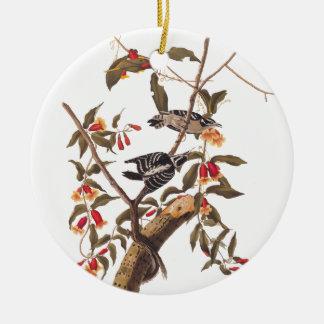 Audubon flaumige Specht-Paare Keramik Ornament
