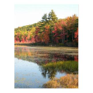 Autumn See 2 Postkarte