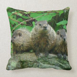 Baby Groundhogs - Waldmurmeltiere - Grundsows Zierkissen