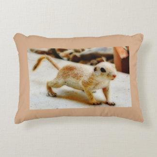 Baby-Grundeichhörnchen in Orions-Kissen Zierkissen