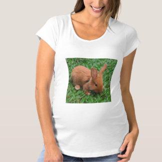 Baby-Häschen Umstands-T-Shirt
