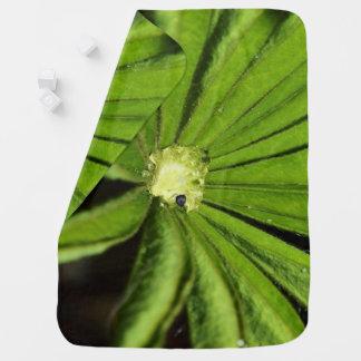 Baby-Palmen-Pflanze durch Shirley Taylor Kinderwagendecke