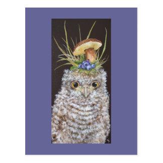 Babyeule mit Blaubeeren und Pilzhut Postkarten