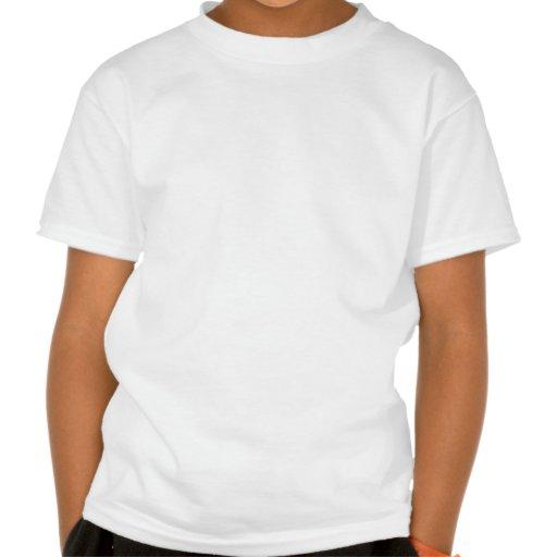 Baltimore: Durch das frühe Licht der Dämmerung Tshirt