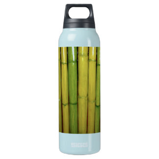 Bambus-Stiel-botanisches Foto des Zen-asiatische Isolierte Flasche