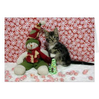 Bandit-Kätzchen-Katzen-Rettungs-Weihnachten Grußkarte
