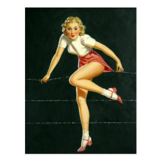 Barbed wire fence PinUp Postkarte