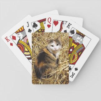 Bauernhof-Katzen-Foto-Spielkarten Pokerdeck