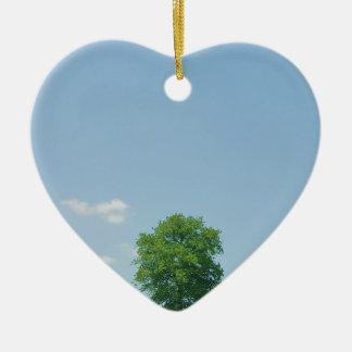 Baum auf einem Gebiet 2 Keramik Ornament