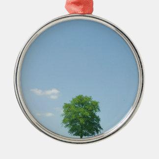 Baum auf einem Gebiet 2 Silbernes Ornament