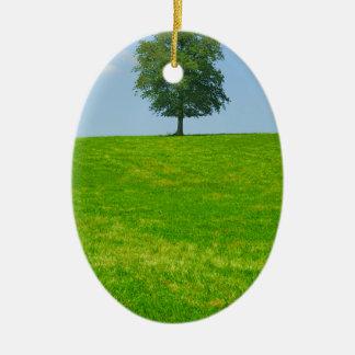 Baum auf einem Gebiet Keramik Ornament