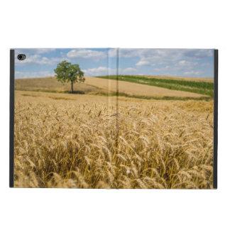 Baum in der Weizen-Feld-Landschaft