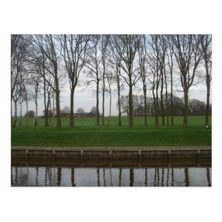 Baum-Linie Kanal-Postkarte Postkarte