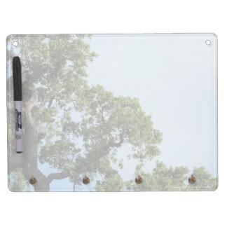 Baum-und Himmel-trockenes Löschen-Brett Trockenlöschtafel Mit Schlüsselanhängern