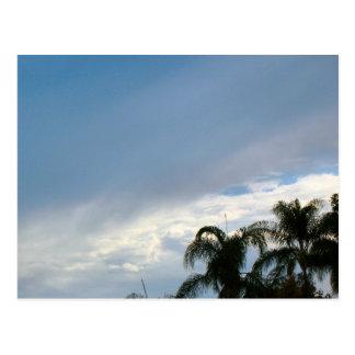 Bäume und Himmel Postkarte