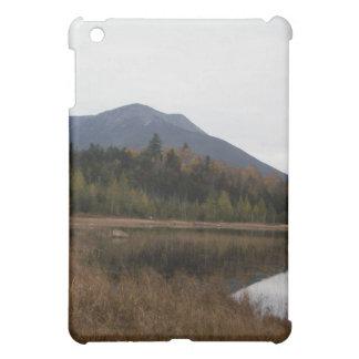Baxter-Staats-Park Hüllen Für iPad Mini