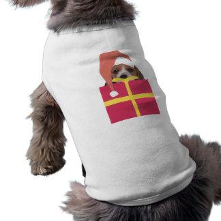 Beagle-Weihnachtsmannmütze-Geschenkboxen Top