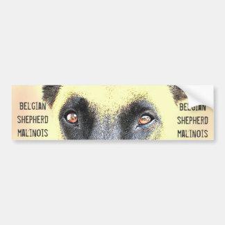 Belgische malinois Schäfer des Autoaufklebers Autoaufkleber