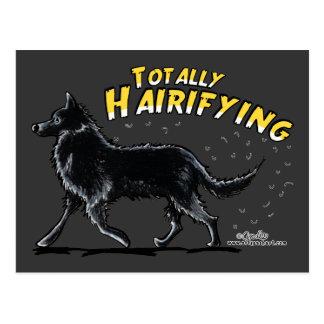 Belgischer Schäferhund total Hairifying Postkarte