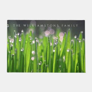Benetztes Wheatgrass morgens Licht Türmatte