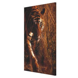 Bengalischer Tiger 4 Leinwanddruck