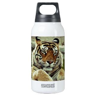 Bengalischer Tiger Thermoflaschen