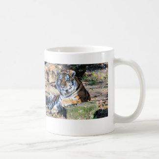 Bengalisches Tiger-Stillstehen Tasse