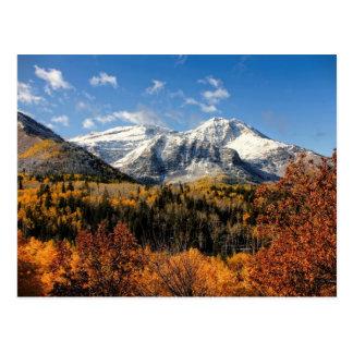 Berg Timpanogos in Herbst-Utah-Bergen Postkarten