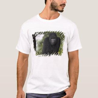 Berggorilla und Silverback 3 T-Shirt