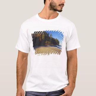 Bergmann-Strand an den dargestellten Felsen T-Shirt