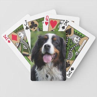 Bernese Gebirgshundeschönes Foto, Geschenk Spielkarten