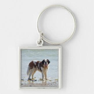 Bernhardiner am Strand keychain, Geschenkidee Silberfarbener Quadratischer Schlüsselanhänger