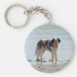 Bernhardiner am Strand keychain, Geschenkidee Standard Runder Schlüsselanhänger