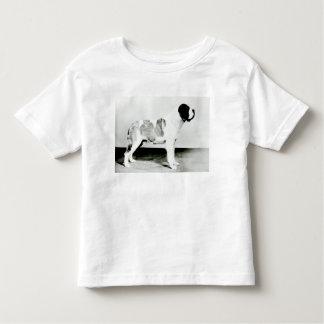 Bernhardiner-Hund Kleinkinder T-shirt