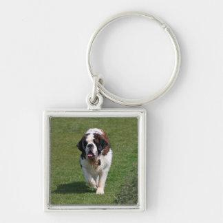 Bernhardiner-Hundeschönes Foto keychain Schlüsselanhänger