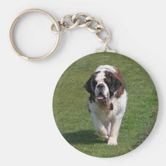 Bernhardiner-Hundeschönes Foto keychain Standard Runder Schlüsselanhänger