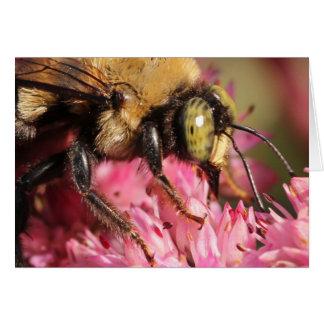 Beschäftigte Biene Mitteilungskarte