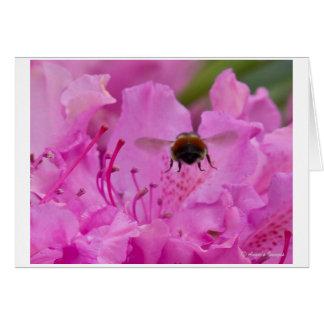 Beschäftigte Bienen-Anmerkungskarte Mitteilungskarte