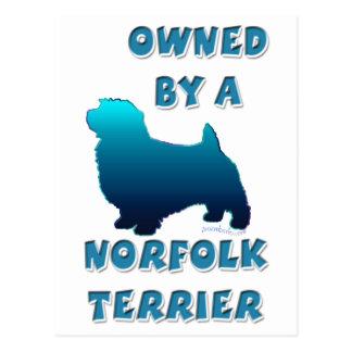 Besessen durch ein Norfolk Terrier Postkarte