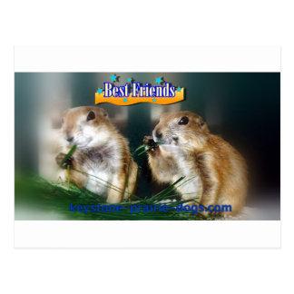 Beste Freunde! Postkarte