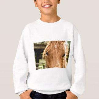 Betrachten Sie dieses Haar! Sweatshirt