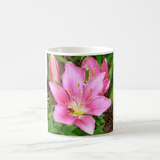 Biene in einem Lilly Tasse
