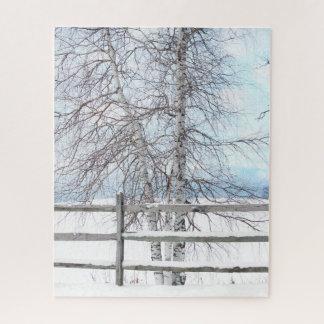 Birken-Baum-Winter Puzzle