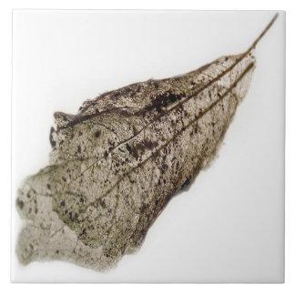 Blatt-Spitze (Sepia) Fliese